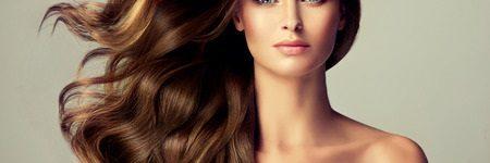 Wig Care
